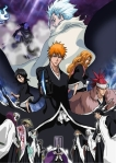 Bleach_Diamond_Dust_Rebellion_by_As